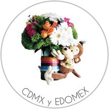 Cdmxy Edomex